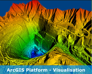 ArcGIS Visualisation